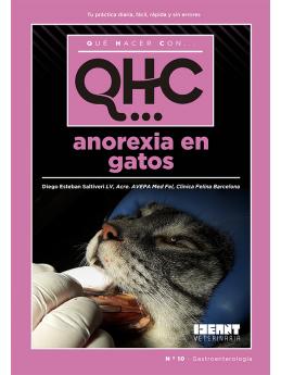 Qué Hacer Con... Anorexia en gatos