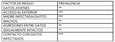 1. 4.FACTORES DE RIESGO