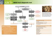 www.abcdcatsvets.org/wp-content/uploads/2017/12/Tool_ABCD_FeL
