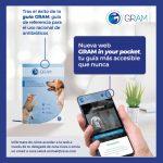 11062021-Gram in the Pocket