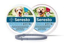 20200710-SerestoPerros-633x430-PR (1)