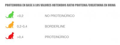 4.1.PROTEINURIA UPC