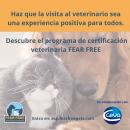 Ayuda a que la visita al veterinario sea una experiencia positiva para todos