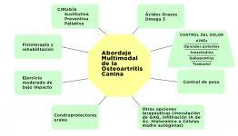 Clave 5 - Esquema. Abordaje multimodal de la artrosis