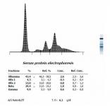 Figura 8. Proteinograma