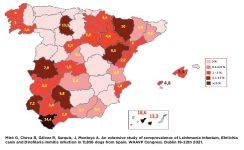 Mapa prevalencia Dirofilaria immitis 2021