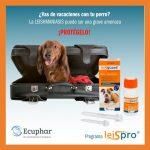 Post Lesigaurd Ecuphar-3