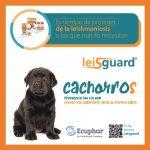 Post Lesigaurd Ecuphar-7