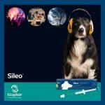 Post Sileo Ecuphar-3