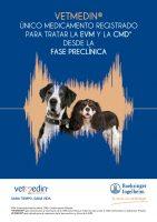 Tratamiento-de-patologías-cardiacas-caninas-1.jpg