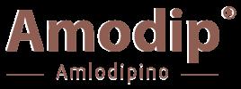 amodiplogo