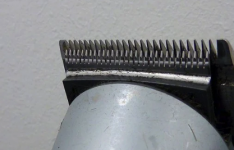 cortapelos