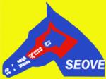 logo-seove-footer-pas00cjr3p2co822omubw558u6xfju8m0dhpvkzv18